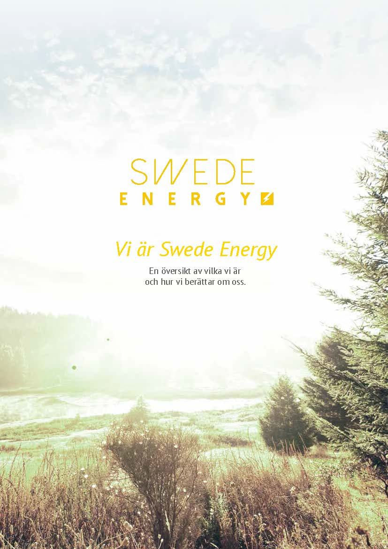 Swede Energy Varumärke & Profil 2014_Sida_01