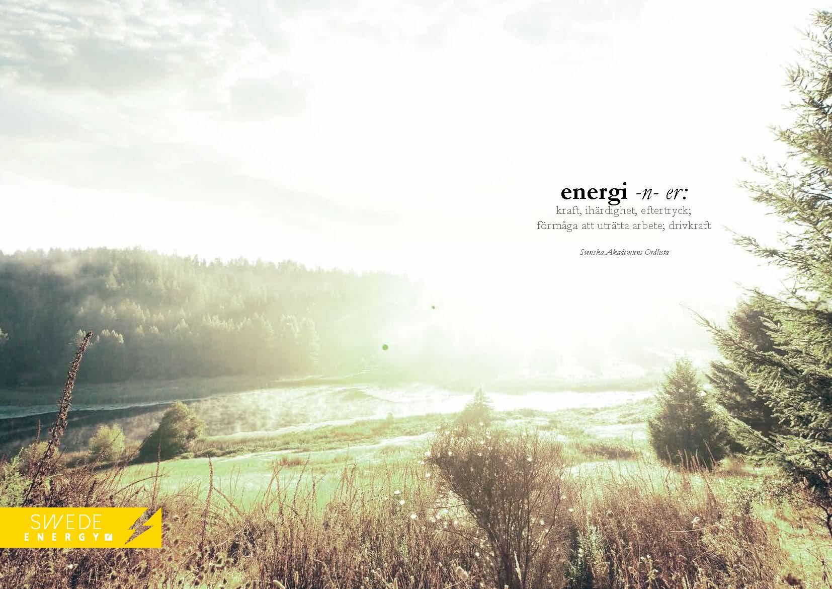 Swede Energy Varumärke & Profil 2014_Sida_02